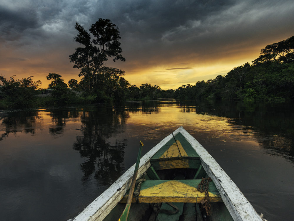 amazonas-rainforest-photography-dominikbrauch